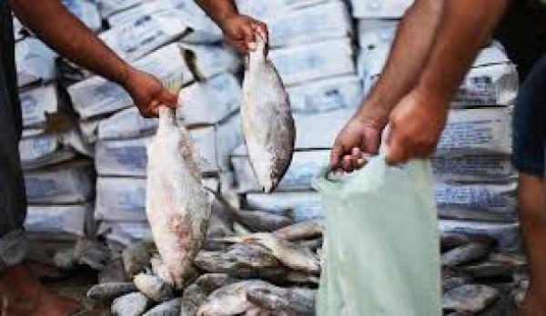 Prefeitura realizará cadastramento do peixe da Semana Santa
